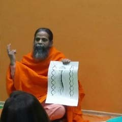 Rajahamsa Swami Nityananda Giri explains the human spine